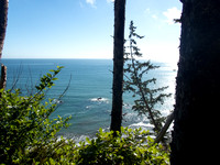 Olympic Coast Backpacking